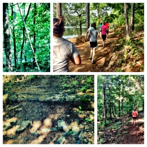 Race Recap – Big Dog Auburn 5K Trail Race 2013